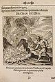 Musaeum Hermeticum 1678 p 361 Fire 0053.JPG
