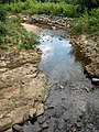 Myers Park, Charlotte, NC, USA - panoramio (2).jpg