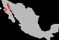 Myotis vivesi range Map.png