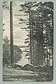 Näkölinja Harjutie–Hynninsaari–Laukansaari, circa 1900 PK0257.jpg