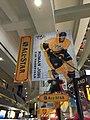 NHL (24410260649).jpg