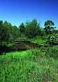 NRCSCO01090 - Colorado (1567)(NRCS Photo Gallery).jpg