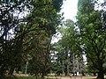 Nairobi Arboretum Park 04.JPG