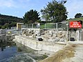 National Seal Sanctuary, Gweek - geograph.org.uk - 992654.jpg