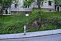 Naturdenkmal 114 Gesamtansicht.jpg