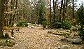 Natuurbegraafplaats Assel.jpg