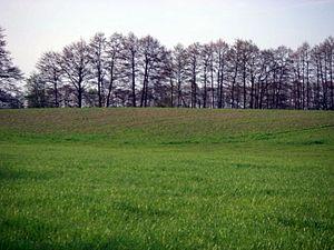 Burgwall Niederungsburg