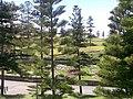 Newcastle, Australia 019.jpg