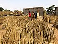 Niger, N'Gonga (5), sale of millet on market day.jpg