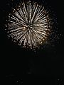 Nishi-nippon Ohori Fireworks Festival 20140801-2.jpg