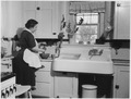 No original caption. (Woman cooking in a kitchen.) - NARA - 513406.tif