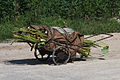 North Korea - Handcart (5944293338).jpg