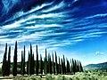 Nubi sul viale dei cipressi.jpg