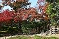 Okayama 2008-11-23 (3241134733).jpg