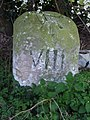 Old Milestone - geograph.org.uk - 1211514.jpg