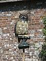 Owl bird-scarer in the walled garden of Trengwainton Garden - geograph.org.uk - 1388330.jpg