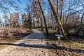 Pörtschach Halbinselpromenade Park mit Erlen und Schilfgürtel 16032018 2699.jpg