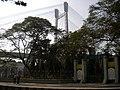 PRINSEP GHAT FROM VIDYASAGAR SETU - panoramio.jpg
