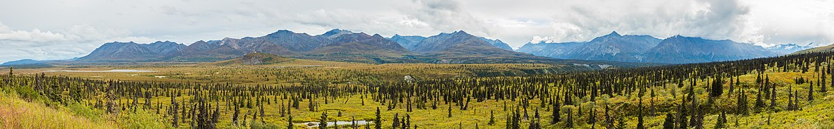 Landscape in Sutton, Alaska, United States.