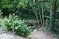 Palmer's Brook crosses under dismantled railway line in Fattingpark Copse - geograph.org.uk - 519221.jpg