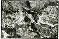 Paolo Monti - Serie fotografica - BEIC 6341037.jpg