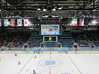 Ice sledge hockey at the 2010 Winter Paralympics