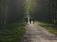 Parc du Chateau de Fontainebleau