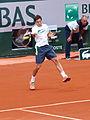 Paris-FR-75-Roland Garros-2 juin 2014-Lajovic-01.jpg