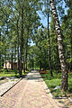 Park-Zdorovia-remont-15070288.jpg