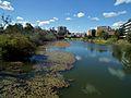 Parramatta River - Parramatta, NSW (7834159972).jpg