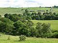 Pastures and woodland near Billerley (2) - geograph.org.uk - 490497.jpg