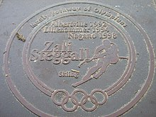 Pathway of olympians manly zali steggall.jpg