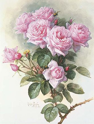 Paul de Longpré - Roses and bumblebees, 1899