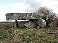 Pawton Quoit - geograph.org.uk - 794.jpg