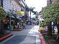 Peatonal Entre Ríos Concordia 2.jpg