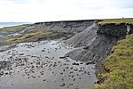 Permafrost in Herschel Island 016.jpg