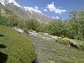 Phander valley Gilgit02.jpg