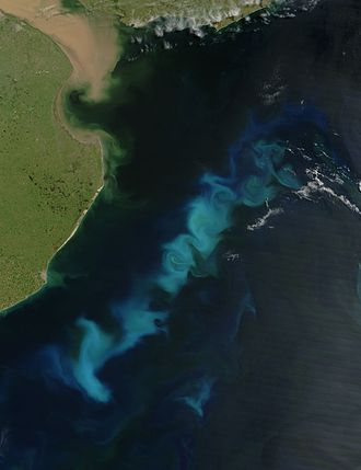 Climate engineering - An oceanic phytoplankton bloom in the South Atlantic Ocean, off the coast of Argentina. The aim of ocean iron fertilization in theory is to increase such blooms by adding some iron, which would then draw carbon from the atmosphere and fix it on the seabed.