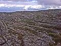 Pico do Inficionado (2068 m) - panoramio (1).jpg