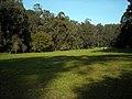 Pine Lake Park @ Stern Grove (4427380705).jpg
