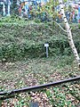Plaque de déclivité pour locomotives à vapeur.jpg