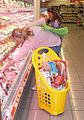Plastic Shopping Cart.jpg