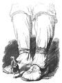 Podróże Gulliwera tom I page0237.png