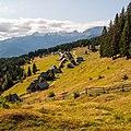 Pokljuka - planina Zajamniki - 2013-08-10.jpg