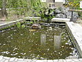 Pond at Tenryuji Temple.jpg