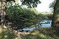 Pond on Landican Lane.jpg