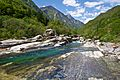 Ponte dei Salti DSC 0328 (4622162182).jpg
