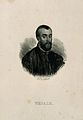 Portrait of Andreas Vesalius (1514 - 1564), Flemish anatomist Wellcome V0006033.jpg
