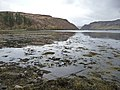 Portree Bay - geograph.org.uk - 1221172.jpg