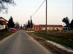 Praščevac - Main Road - panoramio.jpg